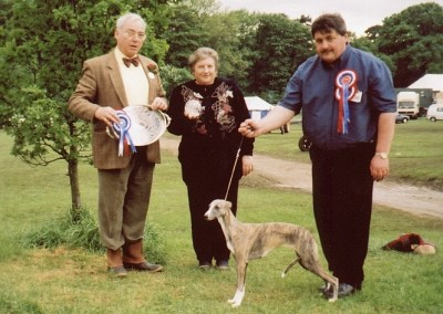 JANELYN-SILVETEC-SIXPENCE-WHIPPET-MR-M-SANDERS-RES-BIS-2000