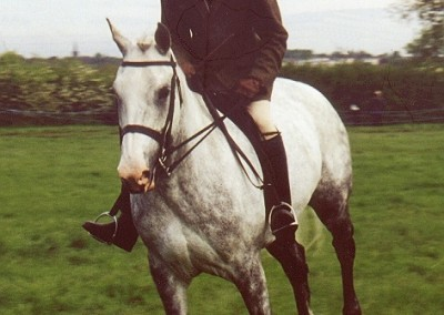 LIGHT-HORSE-MAY-2000