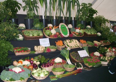 DCS-Hort-vegitables-27Jun04-copy