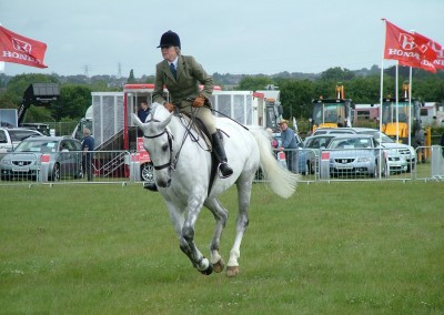 DCS-Showjumping-3-27Jun04