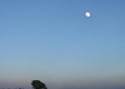 Moon-over-Elvaston-24-Apr-02-copy